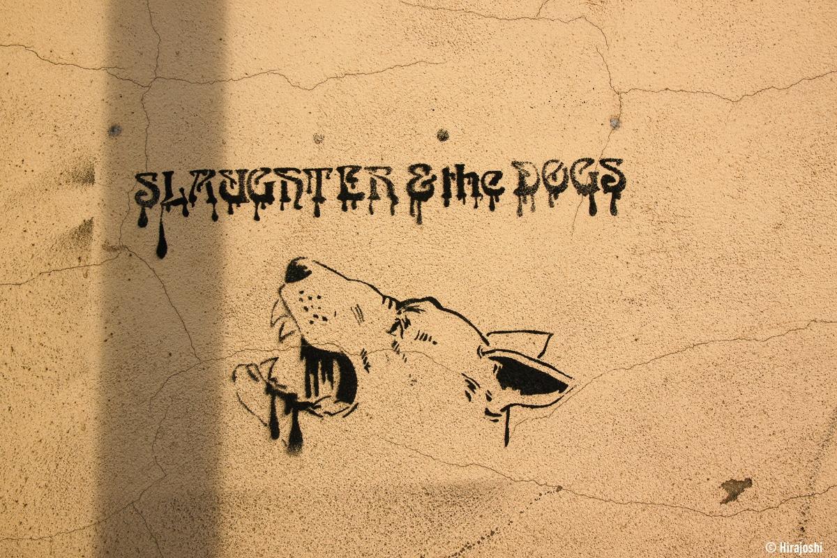 street-art-krakow-poland-b-28